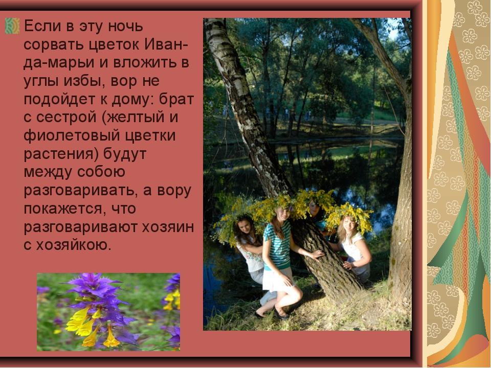 Если в эту ночь сорвать цветок Иван-да-марьи и вложить в углы избы, вор не по...