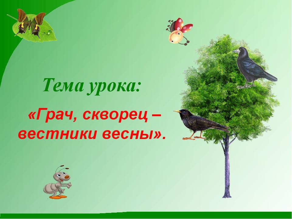 Тема урока: «Грач, скворец – вестники весны».