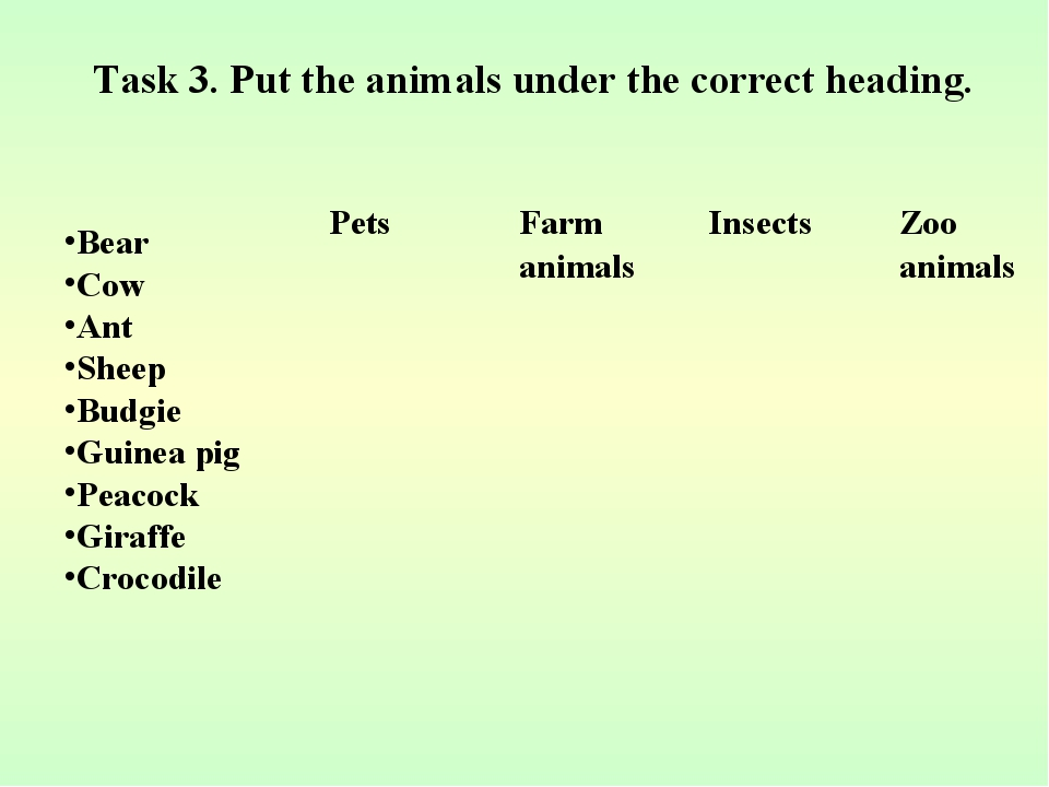 Task 3. Put the animals under the correct heading. Bear Cow Ant Sheep Budgie...