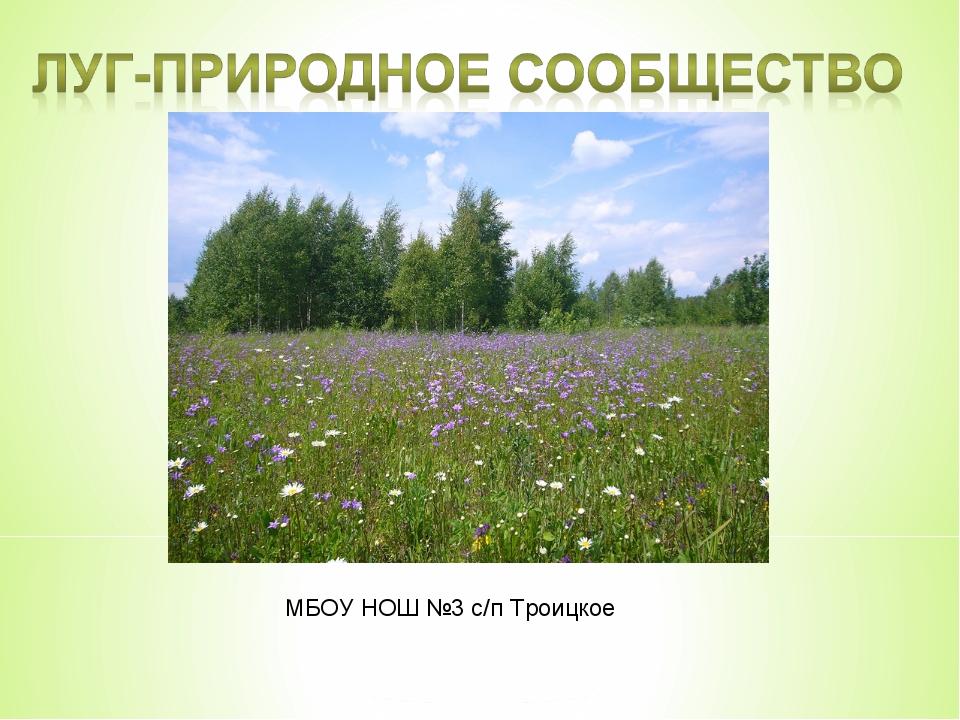 МБОУ НОШ №3 с/п Троицкое