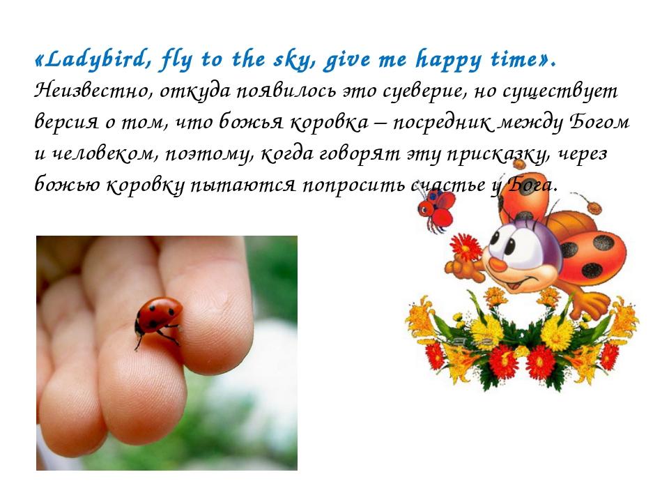 «Ladybird, fly to the sky, give me happy time». Неизвестно, откуда появилось...
