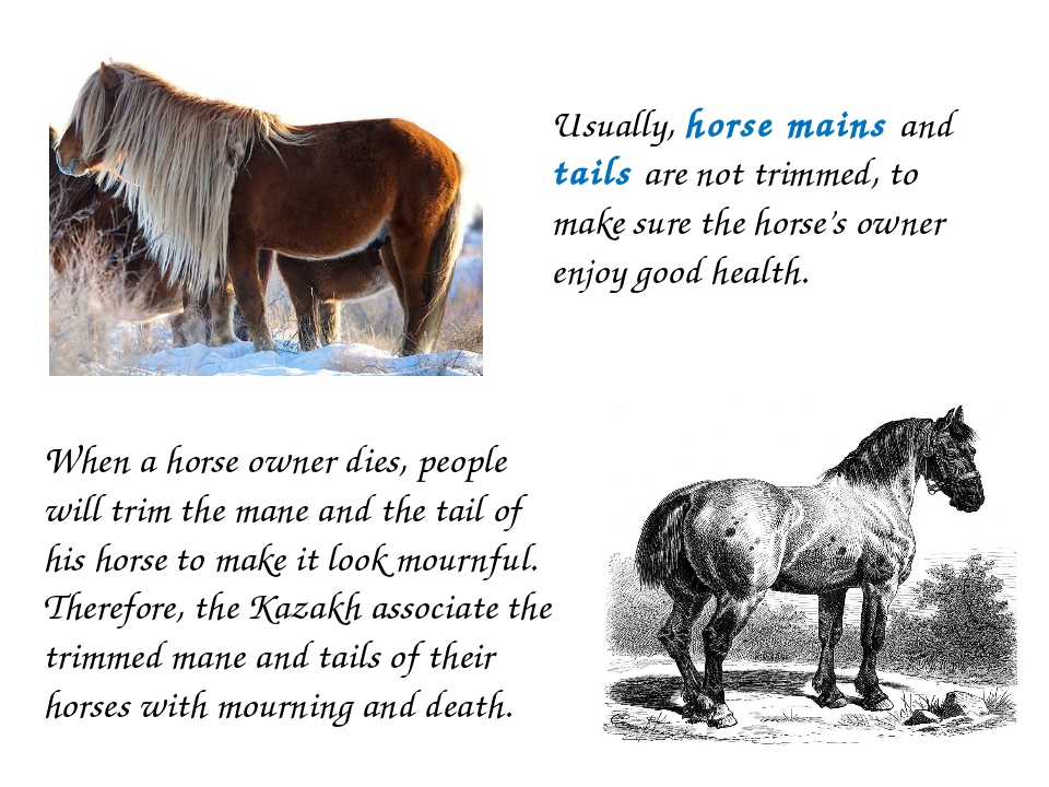 Usually, horse mains and tails are not trimmed, to make sure the horse's owne...