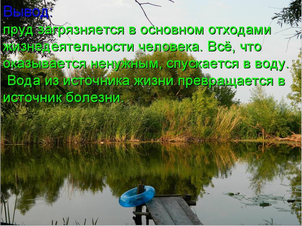 Вывод: пруд загрязняется в основном отходами жизнедеятельности человека. Всё,...