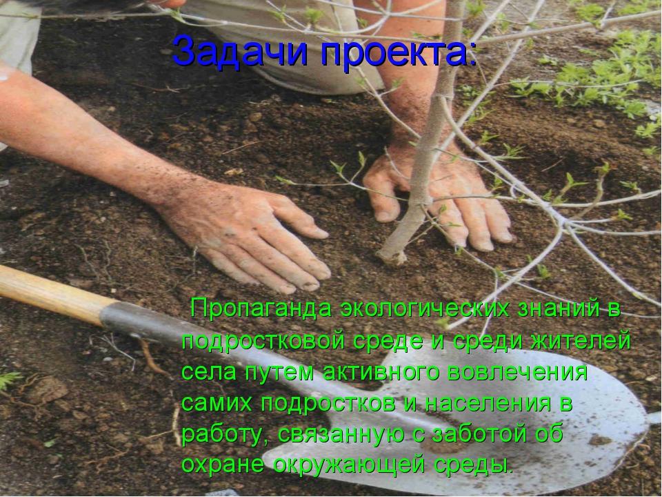 Задачи проекта: Пропаганда экологических знаний в подростковой среде и среди...