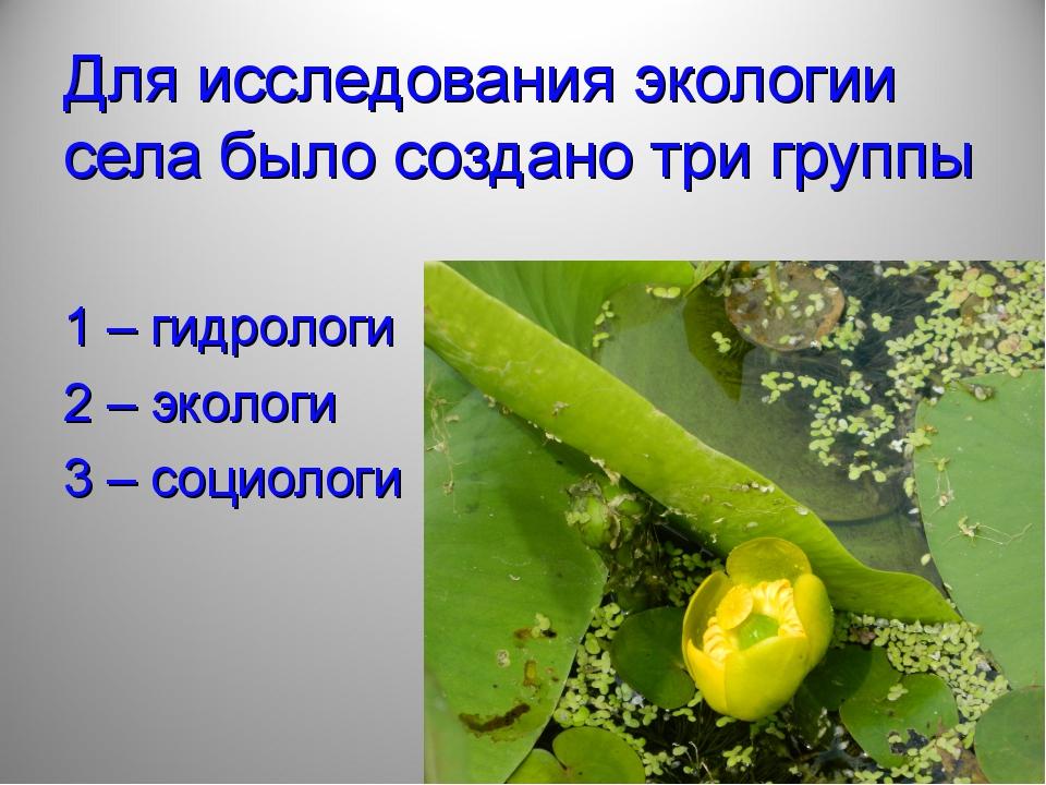 Для исследования экологии села было создано три группы 1 – гидрологи 2 – экол...