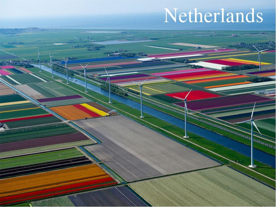 Текст надписи Netherlands