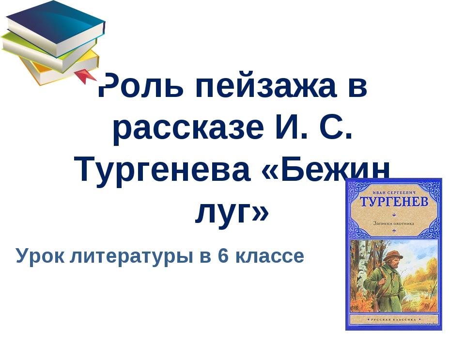 Роль пейзажа в рассказе И. С. Тургенева «Бежин луг» Урок литературы в 6 классе