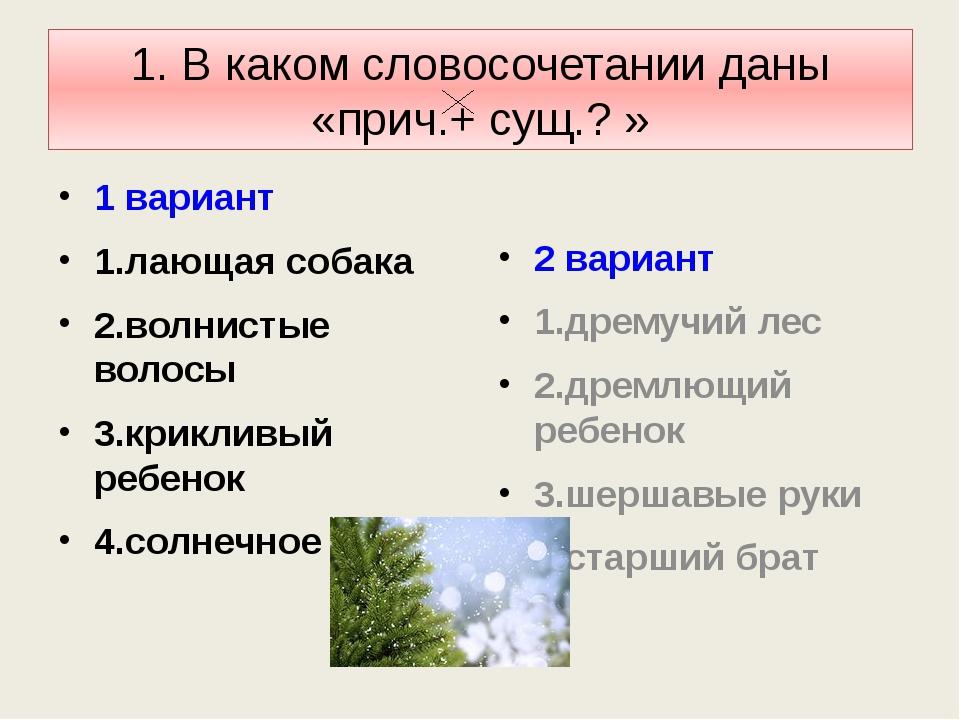 1. В каком словосочетании даны «прич.+ сущ.? » 1 вариант 1.лающая собака 2.во...