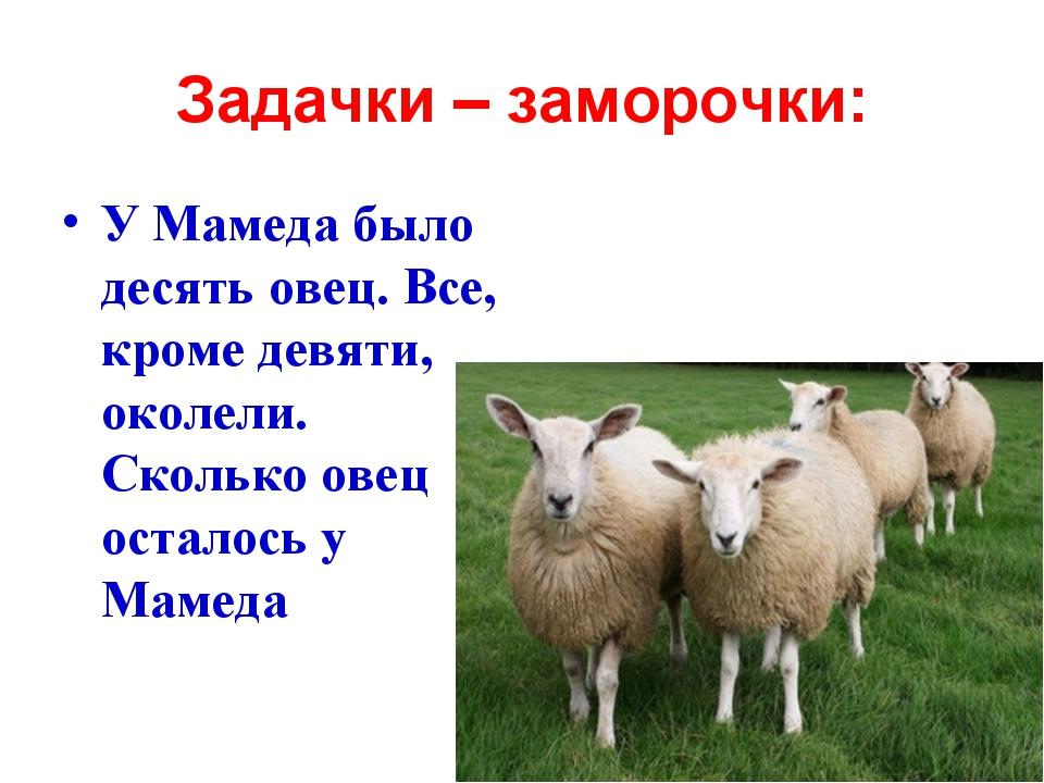 Задачки – заморочки: У Мамеда было десять овец. Все, кроме девяти, околели. С...