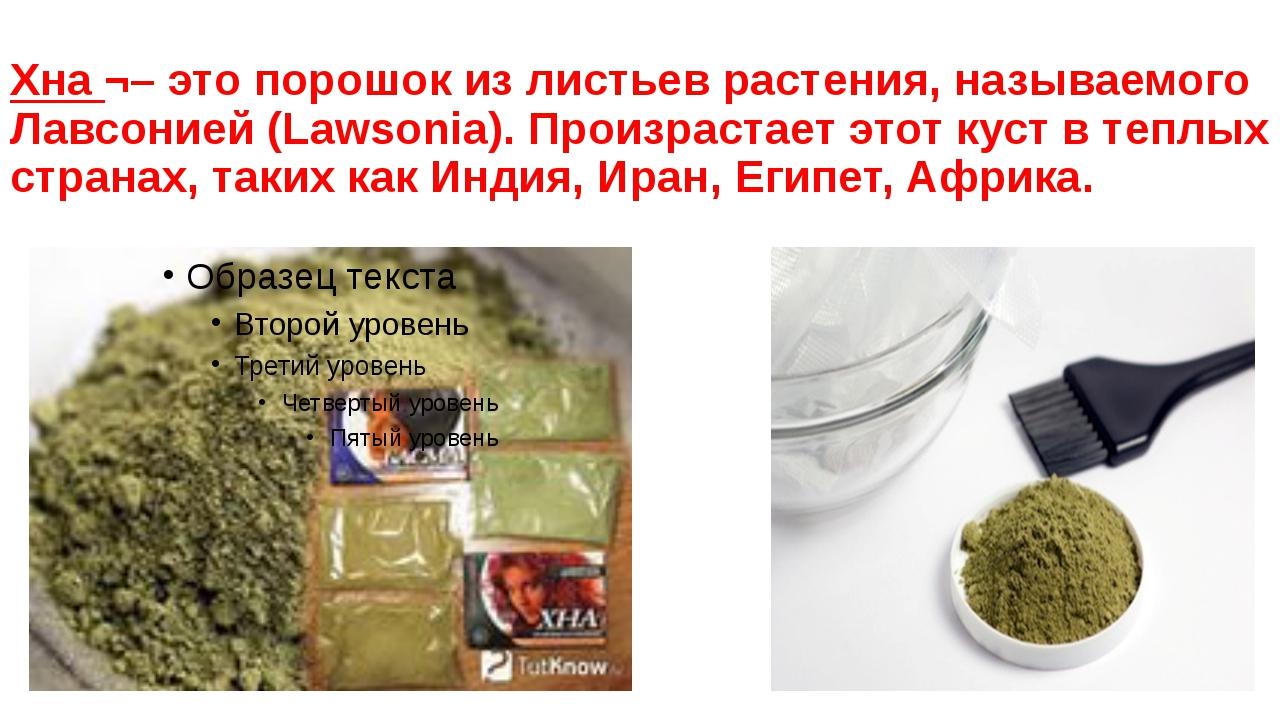 Хна ¬– это порошок из листьев растения, называемого Лавсонией (Lawsonia). Про...