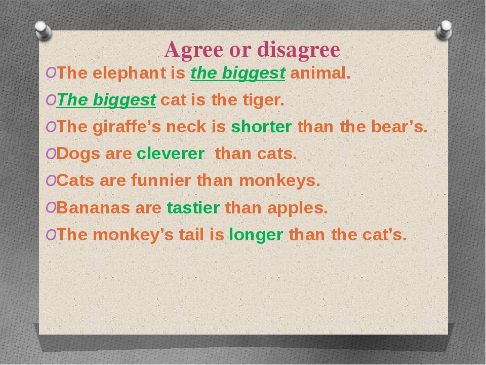 Agree or disagree The elephant is the biggest animal. The biggest cat is the...