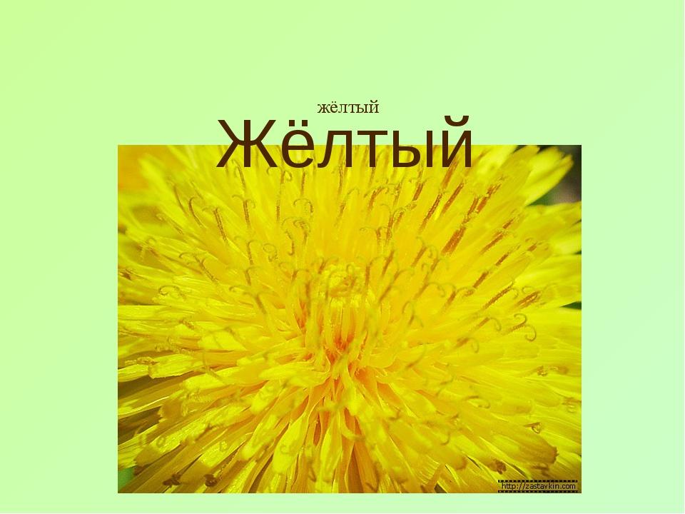 жёлтый Жёлтый
