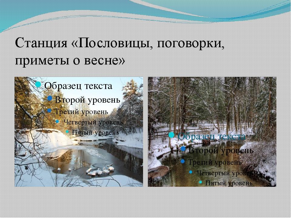 Станция «Пословицы, поговорки, приметы о весне»