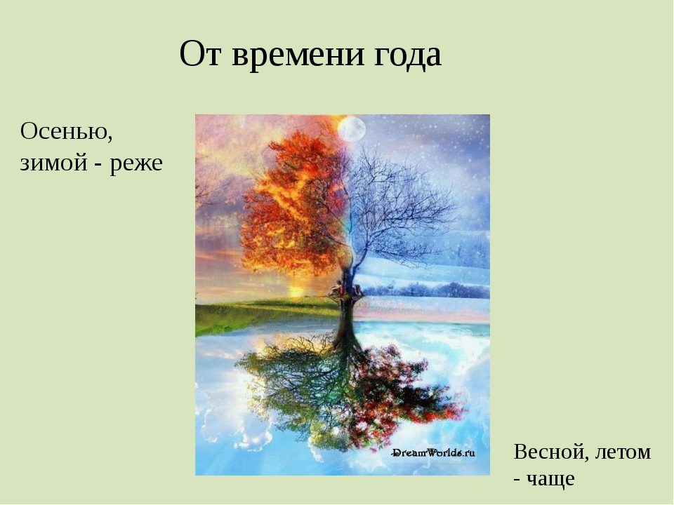 От времени года Осенью, зимой - реже Весной, летом - чаще