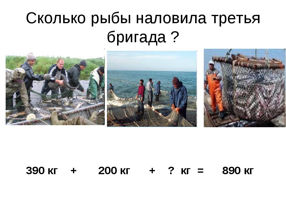 Сколько рыбы наловила третья бригада ? 390 кг + 200 кг + ? кг = 890 кг