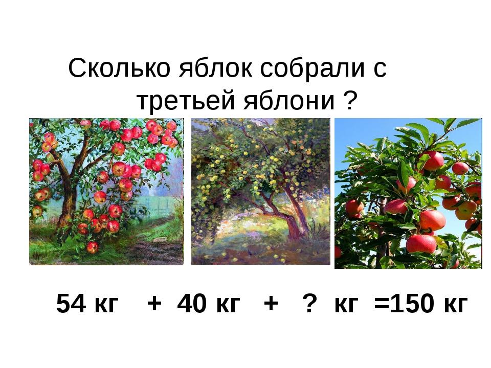 Сколько яблок собрали с третьей яблони ? 54 кг + 40 кг + ? кг =150 кг