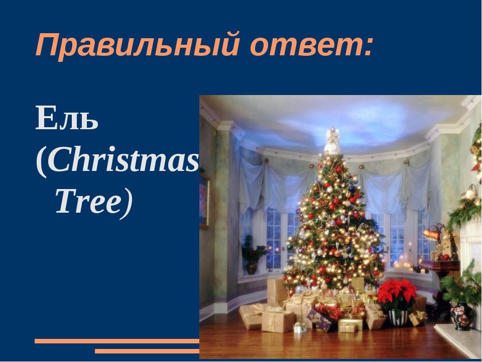 Правильный ответ: Ель (Christmas Tree)