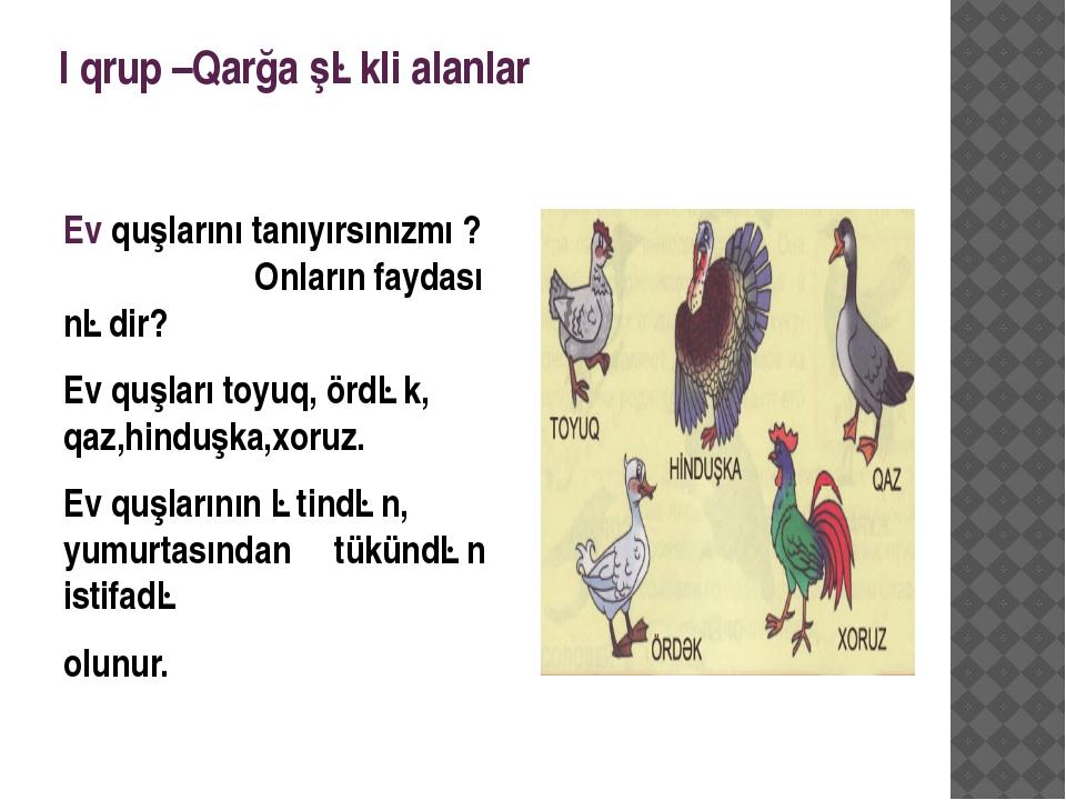 I qrup –Qarğa şəkli alanlar Ev quşlarını tanıyırsınızmı ? Onların faydası nəd...
