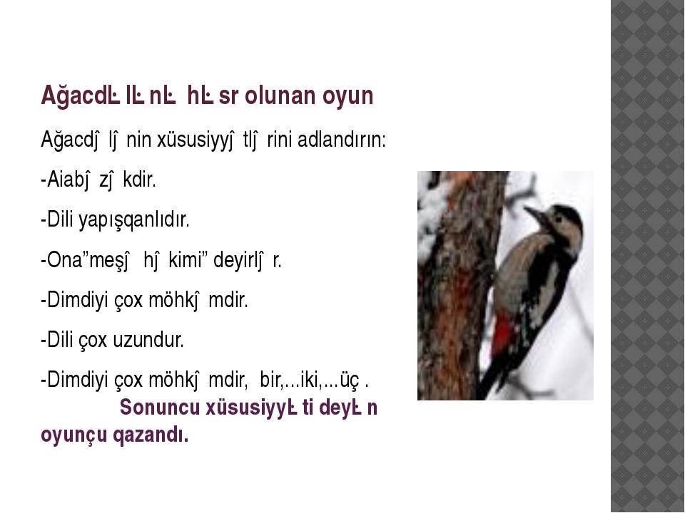 Ağacdələnə həsr olunan oyun Ağacdələnin xüsusiyyətlərini adlandırın: -Aiabəzə...