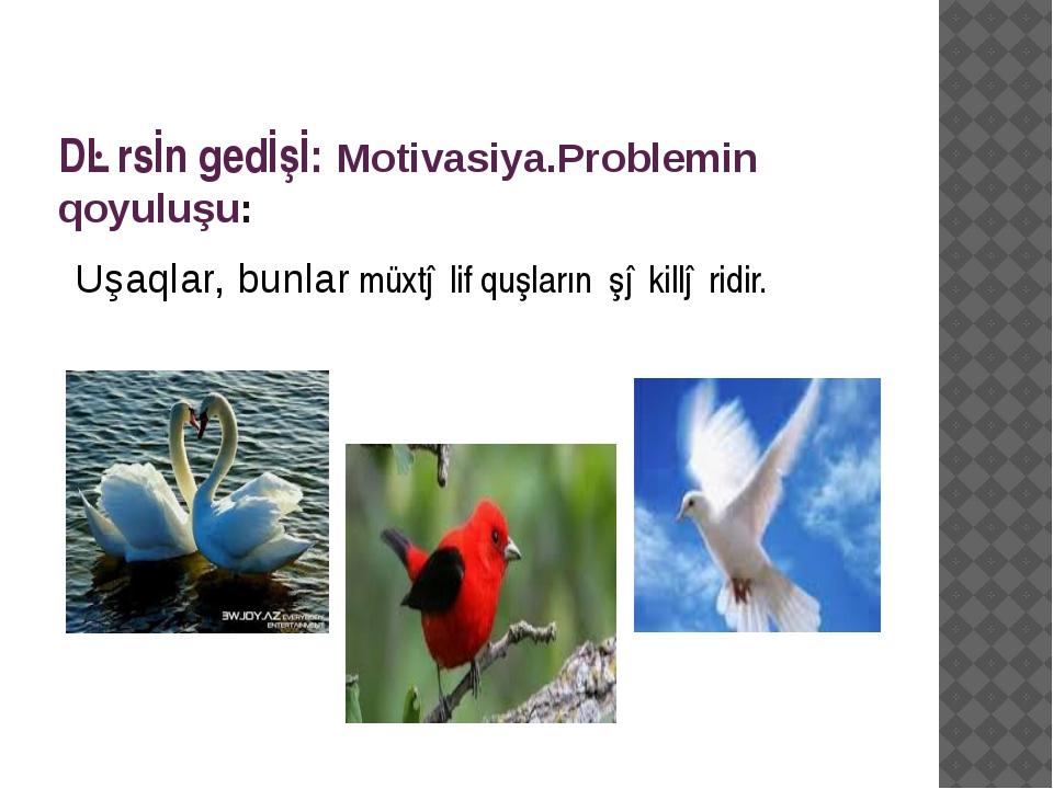 Dərsİn gedİşİ: Motivasiya.Problemin qoyuluşu: Uşaqlar, bunlar müxtəlif quşlar...