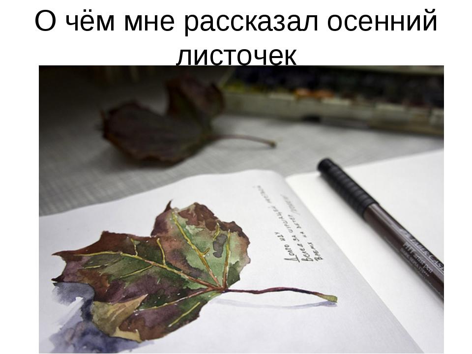 О чём мне рассказал осенний листочек