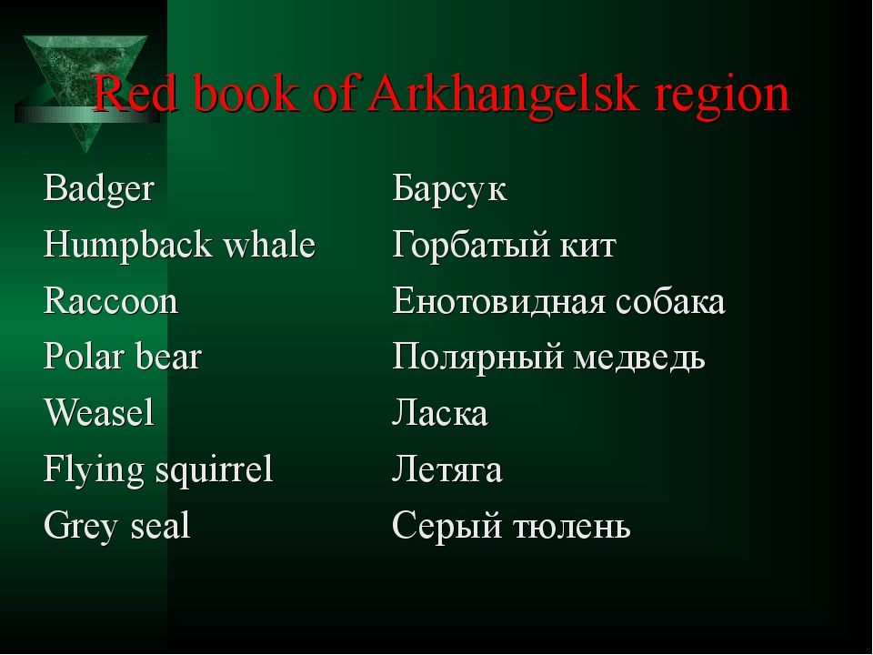 Red book of Arkhangelsk region Badger			Барсук Humpback whale	Горбатый кит Ra...