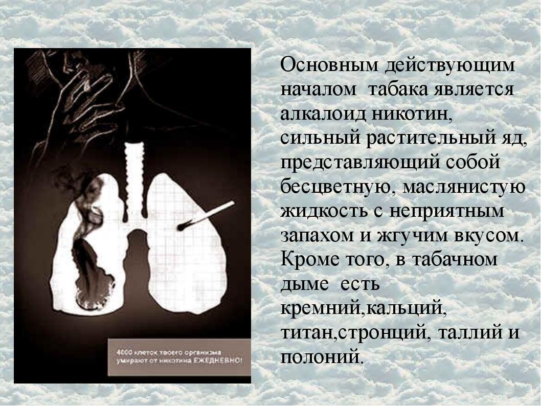 Основным действующим началом табака является алкалоид никотин, сильный растит...