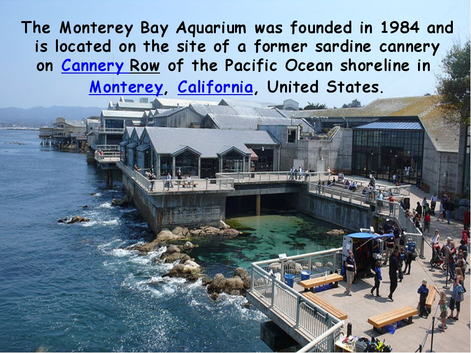 TheMonterey Bay Aquariumwas founded in 1984 and is located on the site of a...