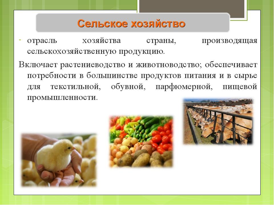 Сельское хозяйство отрасль хозяйства страны, производящая сельскохозяйственну...