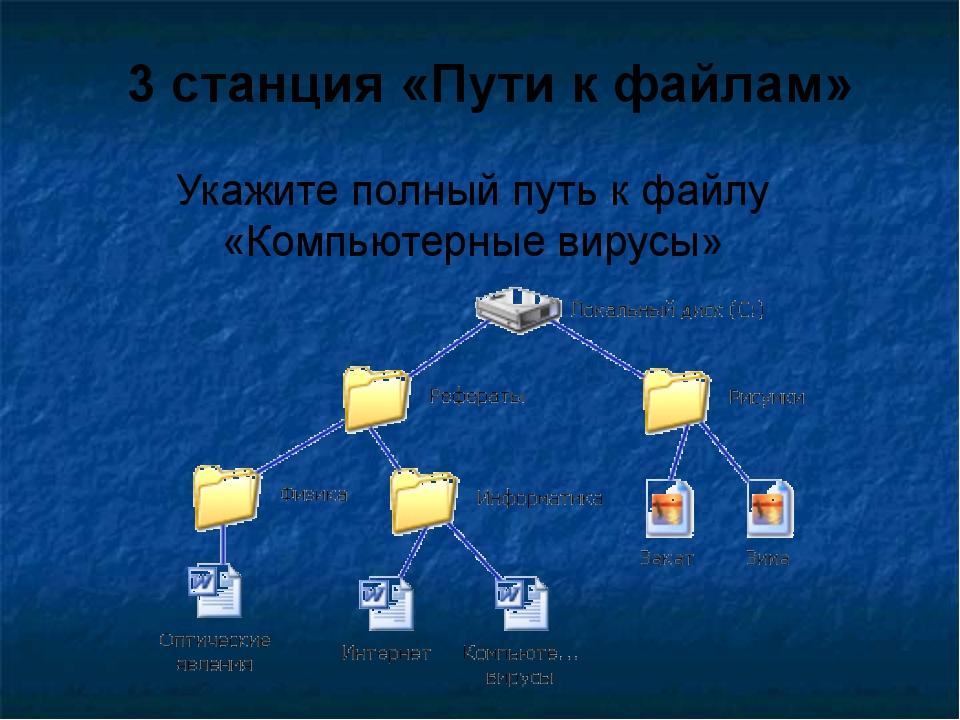 Укажите полный путь к файлу «Компьютерные вирусы» 3 станция «Пути к файлам»
