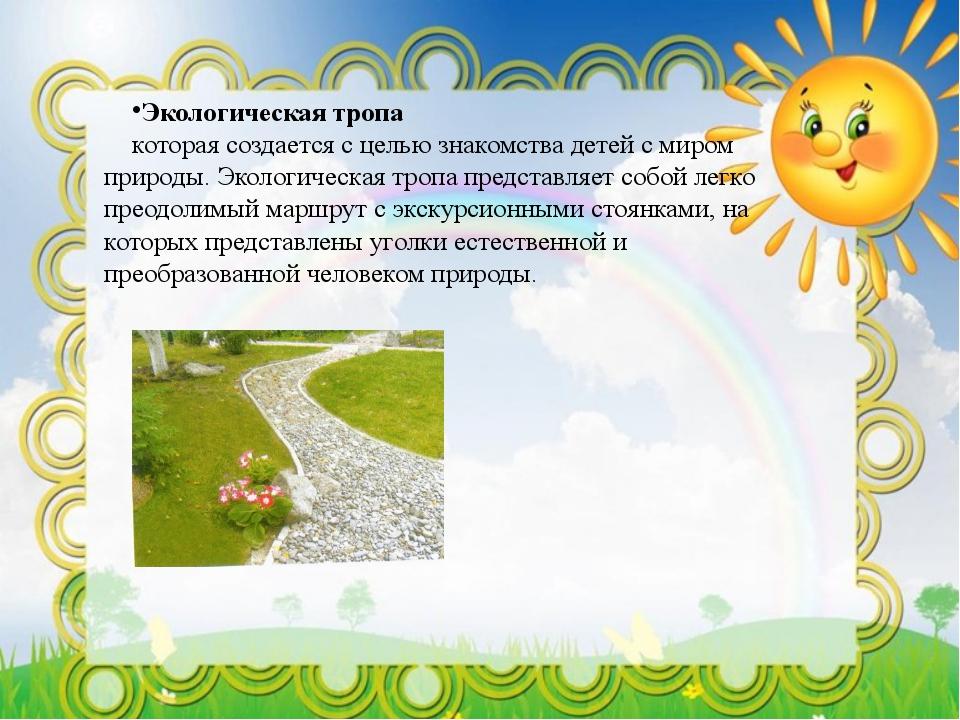 Экологическая тропа которая создается с целью знакомства детей с миром природ...