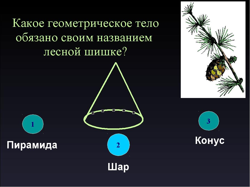 Какое геометрическое тело обязано своим названием лесной шишке? 1 Пирамида 2...