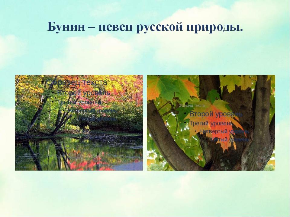 Бунин – певец русской природы.