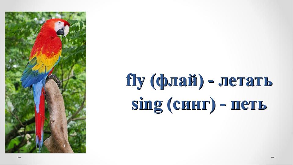 fly (флай) - летать sing (синг) - петь