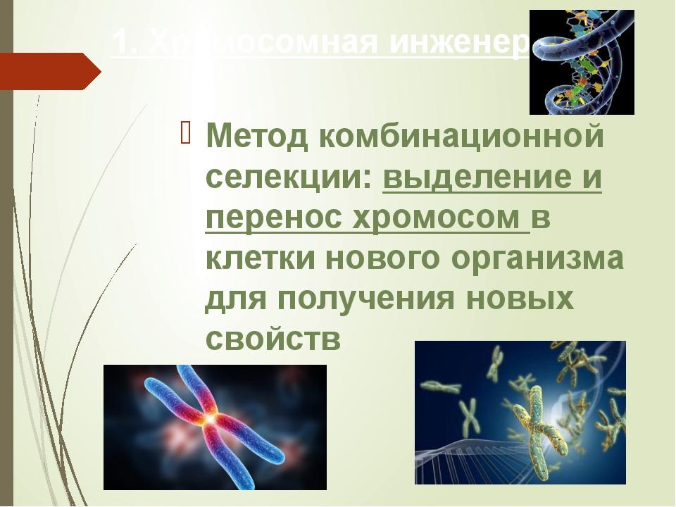 1. Хромосомная инженерия Метод комбинационной селекции: выделение и перенос х...
