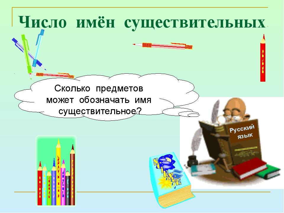 Число имён существительных Русский язык Сколько предметов может обозначать им...