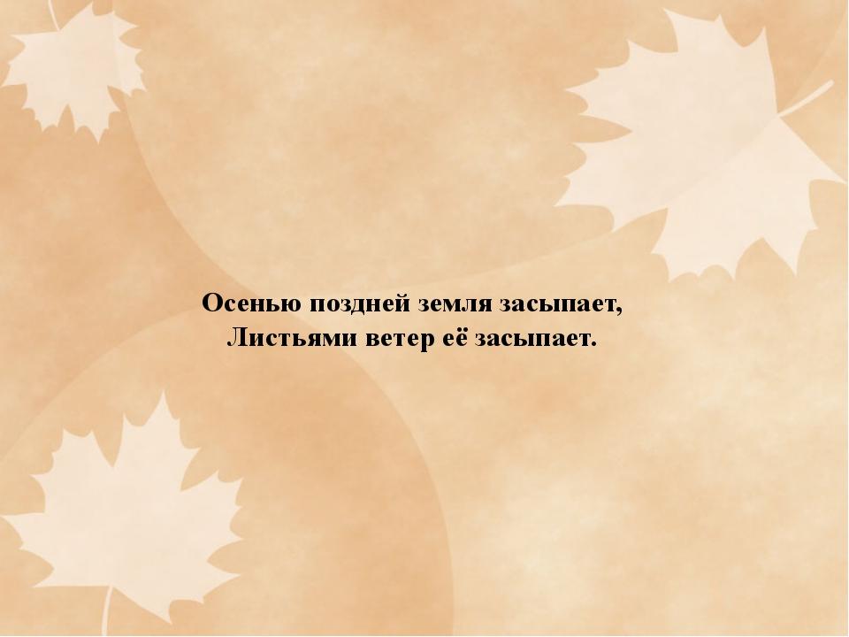 Осенью поздней земля засыпает, Листьями ветер её засыпает.