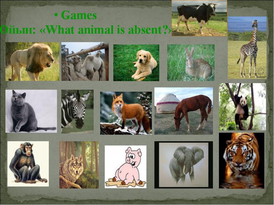 Games Ойын: «What animal is absent?»