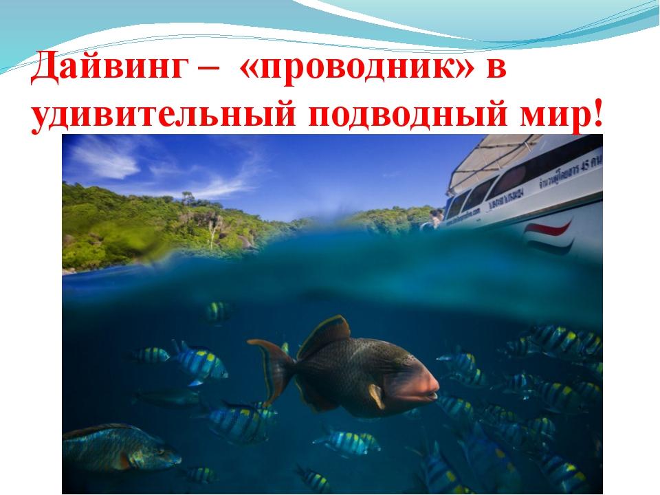 Дайвинг – «проводник» в удивительный подводный мир!