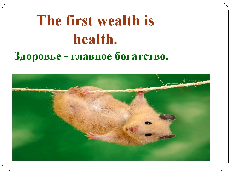 The first wealth is health. Здоровье - главное богатство.