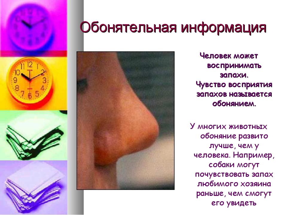 Обонятельная информация Человек может воспринимать запахи. Чувство восприятия...