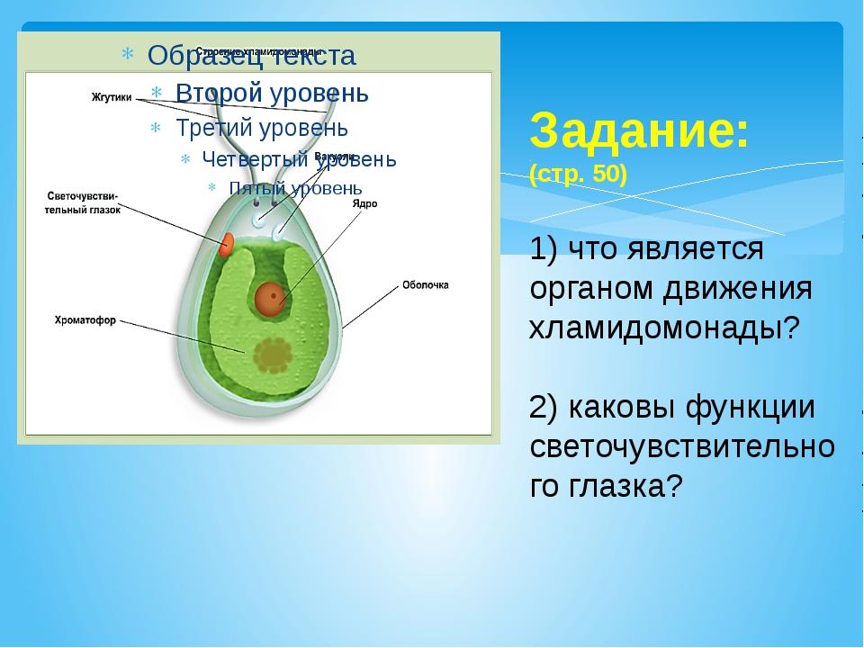 Задание: (стр. 50) 1) что является органом движения хламидомонады? 2) каковы...