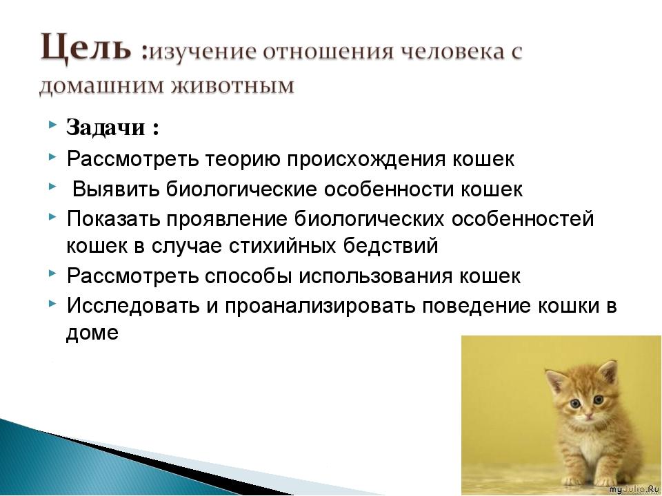 Задачи : Рассмотреть теорию происхождения кошек Выявить биологические особенн...