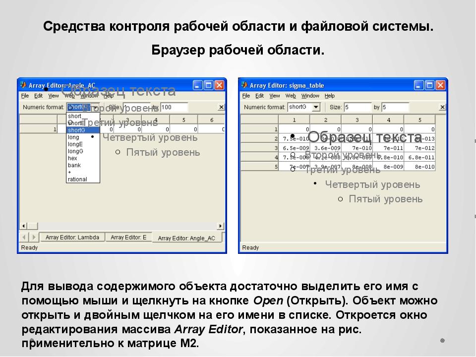 Средства контроля рабочей области и файловой системы. Браузер рабочей области...