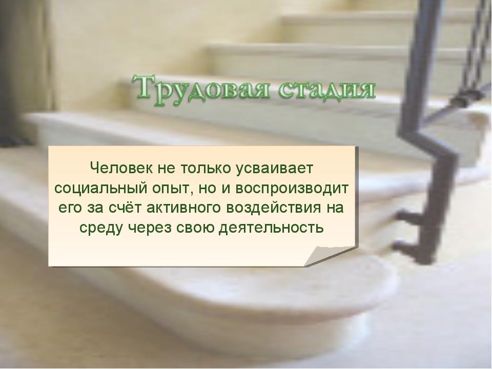 Человек не только усваивает социальный опыт, но и воспроизводит его за счёт а...