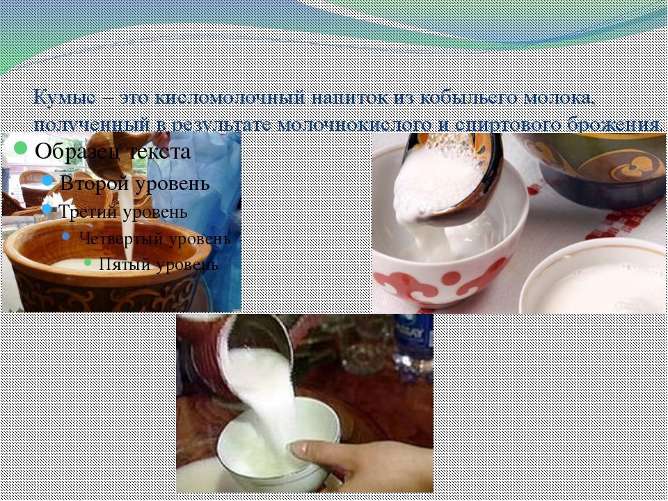 Кумыс – это кисломолочный напиток из кобыльего молока, полученный в результат...
