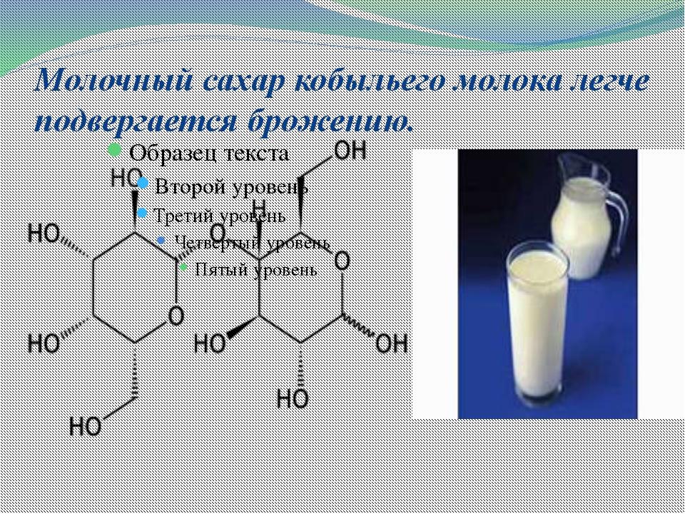 Молочный сахар кобыльего молока легче подвергается брожению.