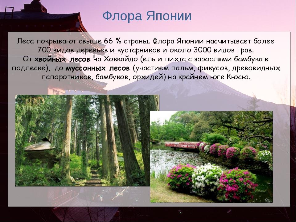 Флора Японии Леса покрывают свыше 66% страны. Флора Японии насчитывает более...