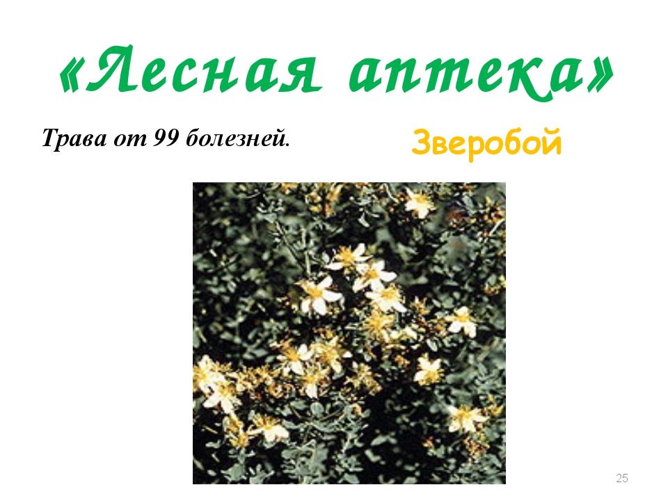 «Лесная аптека» Трава от 99 болезней. Зверобой *