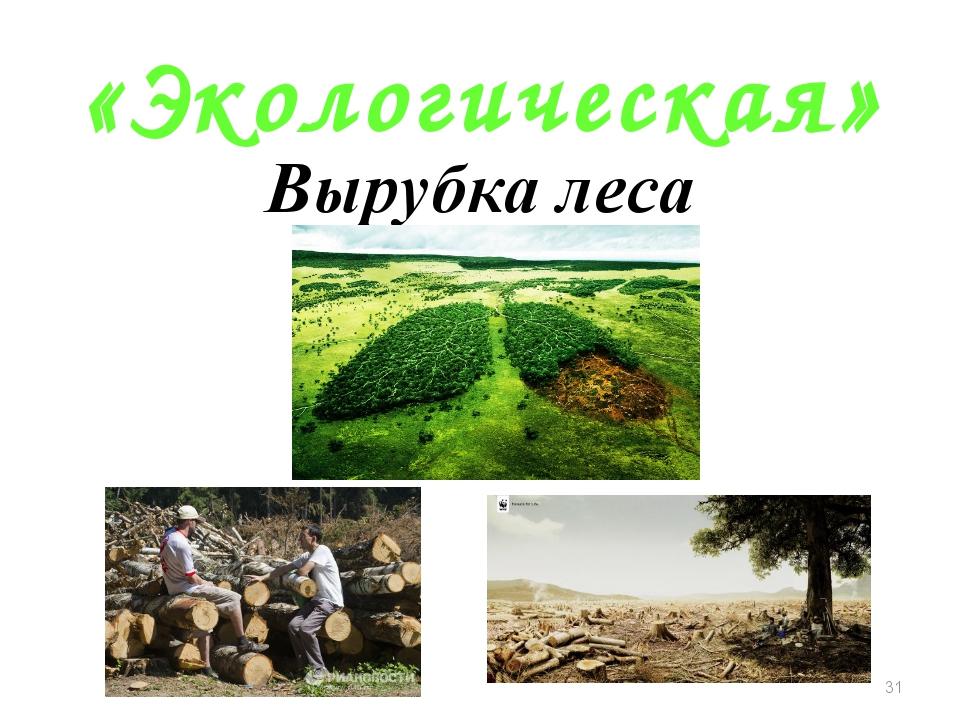 «Экологическая» Вырубка леса *